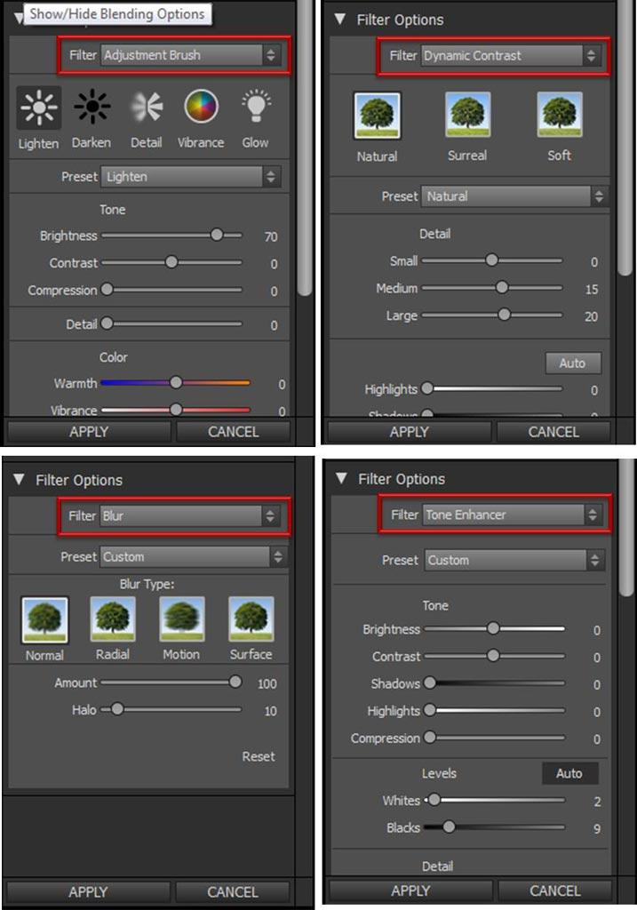 Algunas opciones de varios filtros Perfect Effects