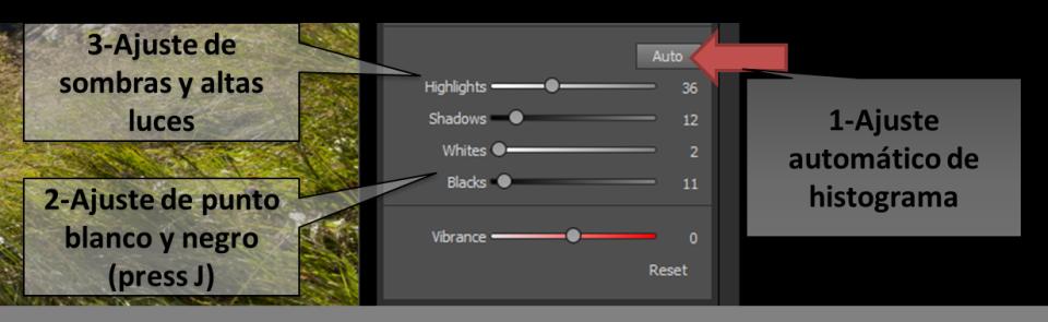 Ajuste histograma con Dynamic Contrast