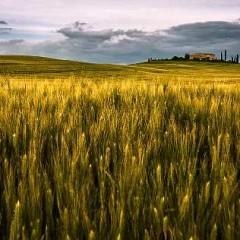 Toscana; Antes y Después