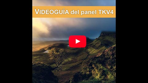 videoguia-panel-tony-kuyper-en-espanol-2
