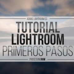 Tutorial Lightroom II: Calibración de Cámara de lightroom