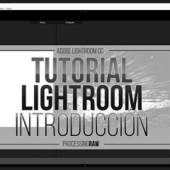 Tutorial Lightroom: aprende paso a paso a revelar tus RAW