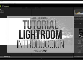 Tutorial Lightroom: aprende paso a paso a revelar tus RAW
